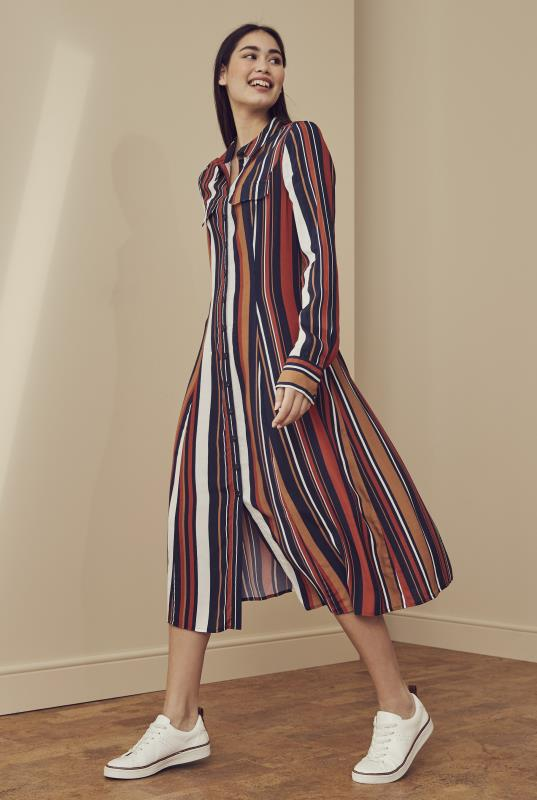 Navy Stripe Print Shirt Dress