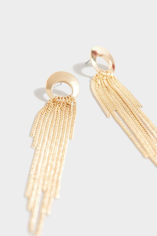 Gold Tassel Long Earrings_D.jpg