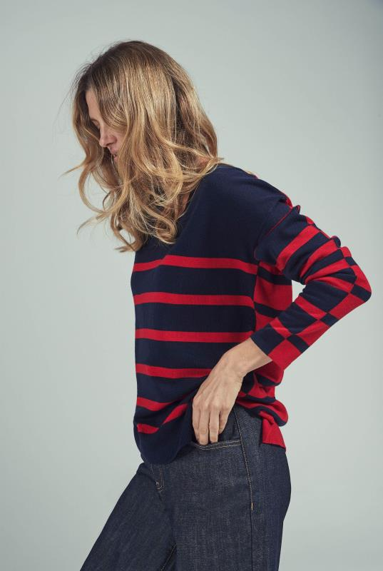 Navy & Red Wool Blend Stripe Knitted Jumper