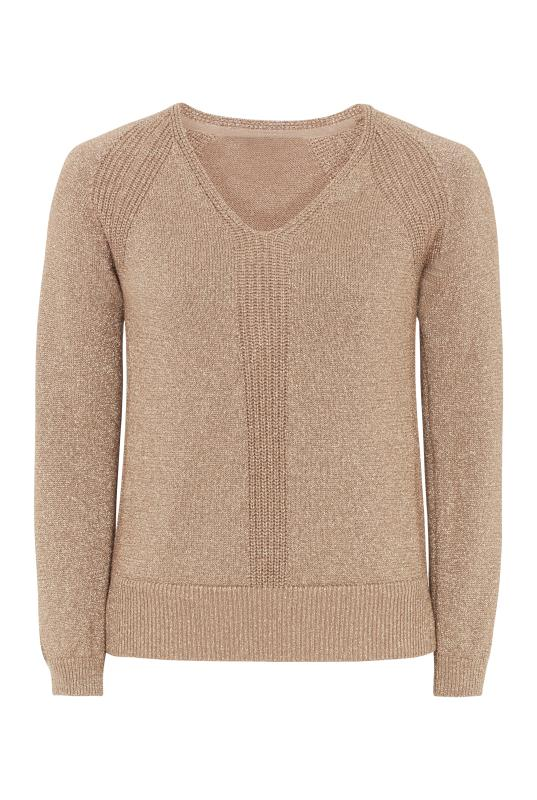 Metallic V Neck Sweater