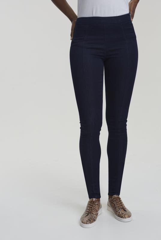 Tall Jeggings Panelled Denim Jegging