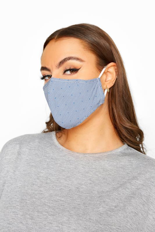 Plus Size  Blue Stripe Spot Antibacterial Face Mask