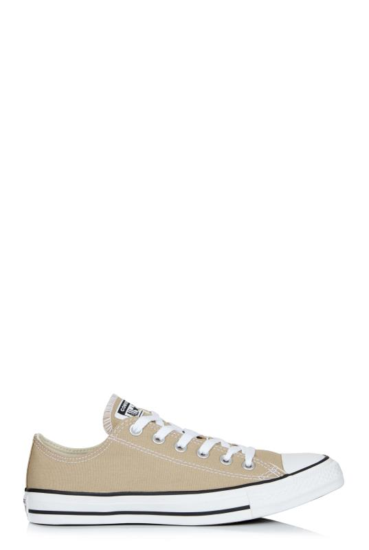 Tall Lace Ups Chuck Taylor All Star