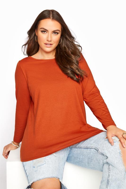 Plus Size  Burnt Orange Scoop Neck T-Shirt