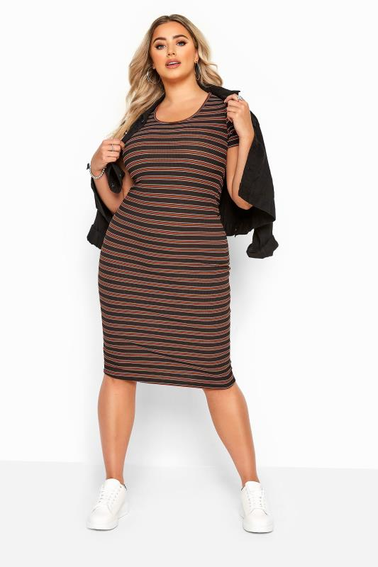 Plus Size Midi Dresses Black & Rust Stripe Ribbed Midi Dress