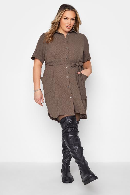 Plus Size  Brown Belted Shirt Dress