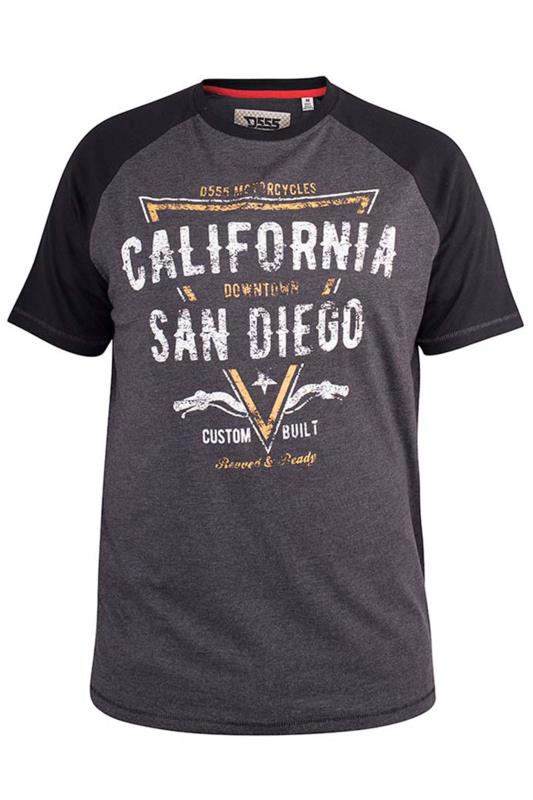 D555 Grey Raglan Sleeve 'San Diego' Slogan T-Shirt