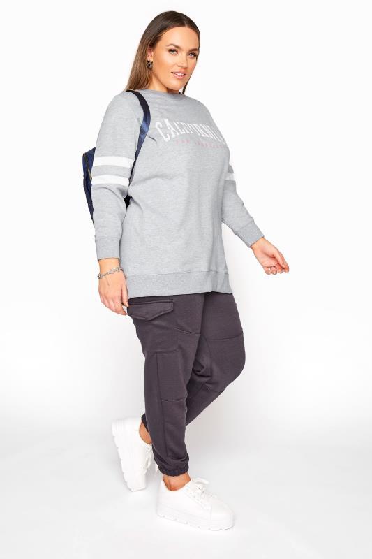 Grey Varsity Stripe California Sweatshirt_B.jpg