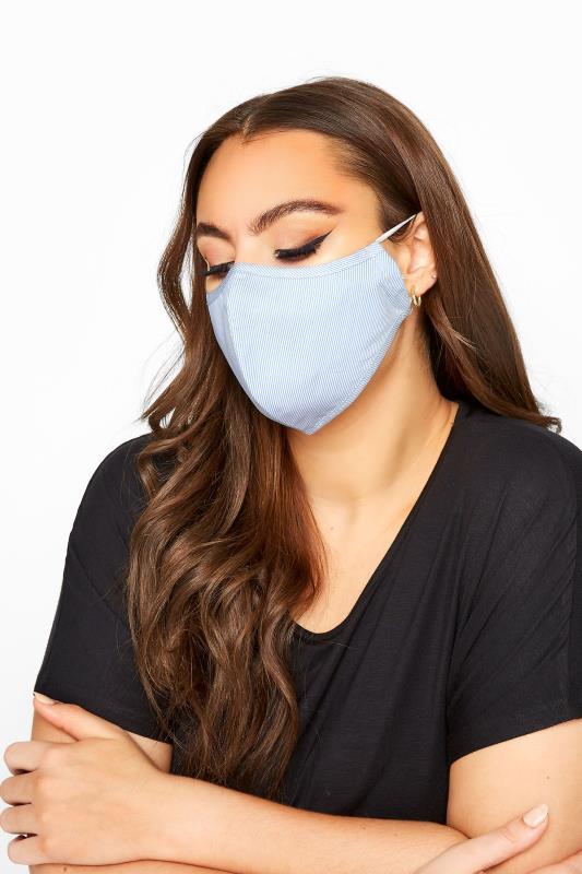 Plus Size  Blue Stripe Antibacterial Face Mask
