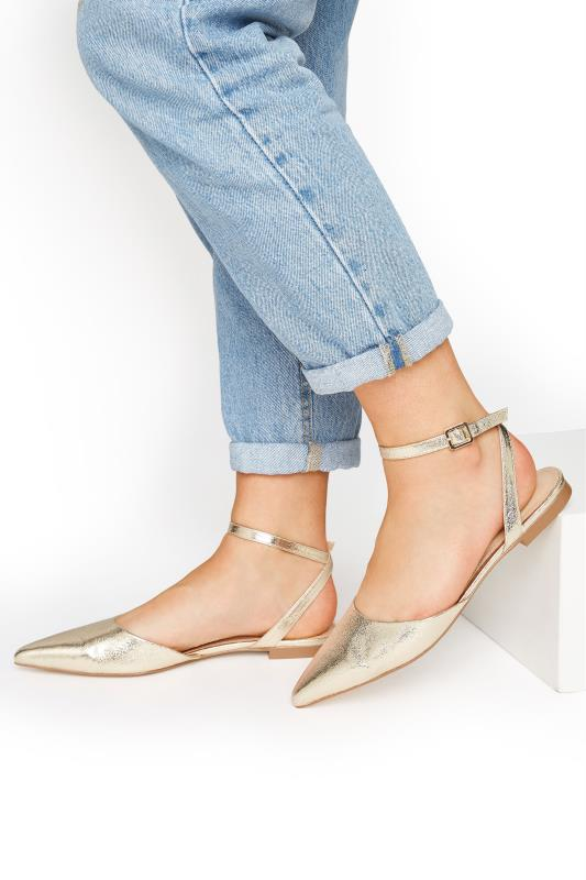 Tall  LTS Gold Two Part Point Shoes