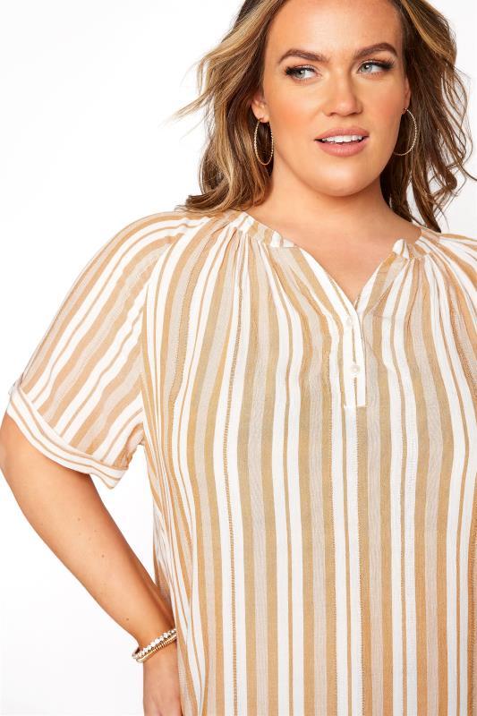 Yellow Stripe Raglan Sleeve Shirt_D.jpg