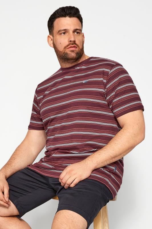 Plus Size T-Shirts BadRhino Burgundy & White Stripe T-Shirt