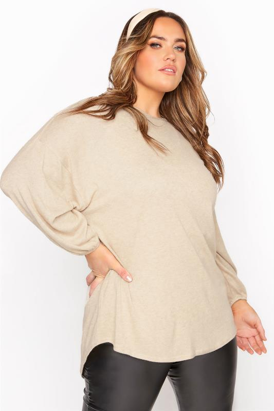 Plus Size  Beige Marl Soft Dipped Hem Knitted Top