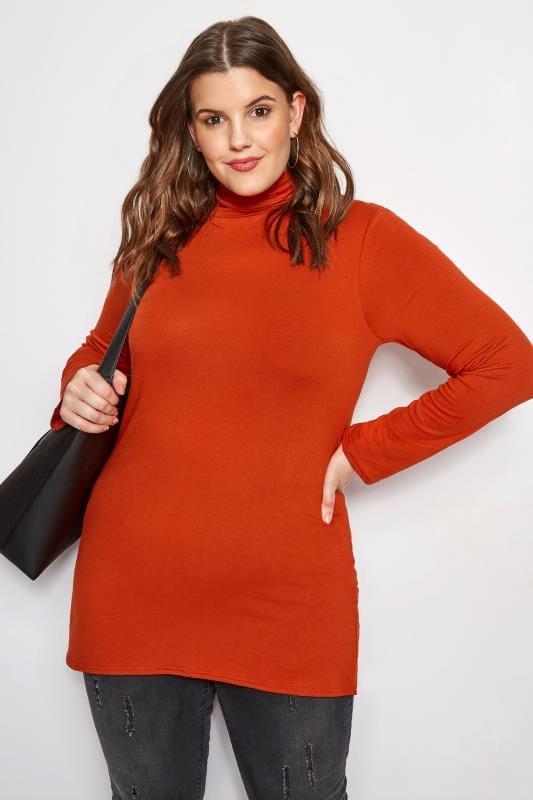 Plus Size Basic T-Shirts & Vests Burnt Orange Turtleneck Top