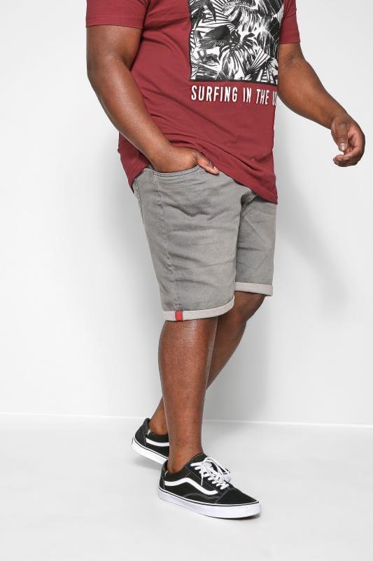 Denim Shorts D555 Grey Stretch Denim Shorts
