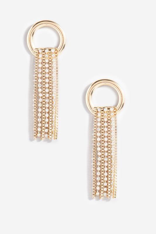 Gold Loop Diamante Tassel Earrings_1a82.jpg
