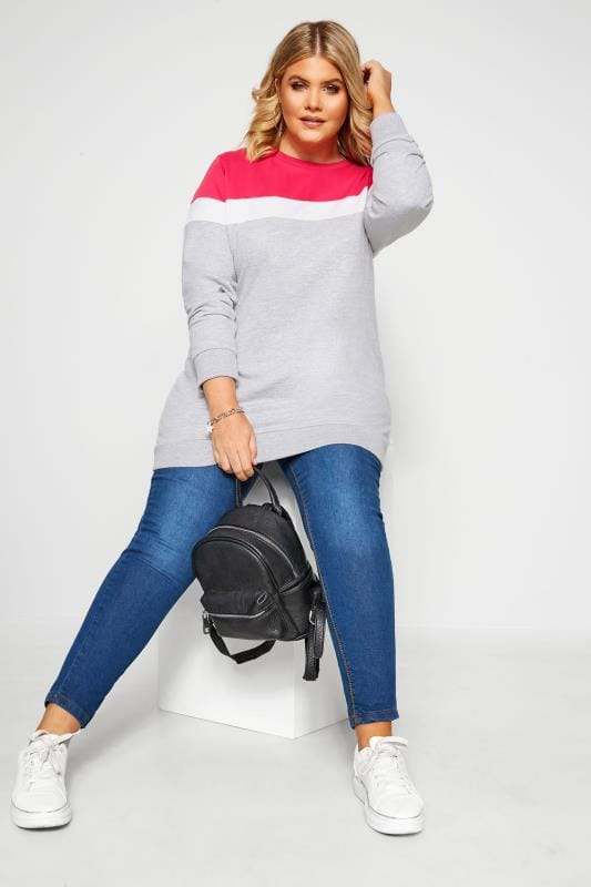 Plus Size Sweatshirts Grey & Hot Pink Colour Block Sweatshirt