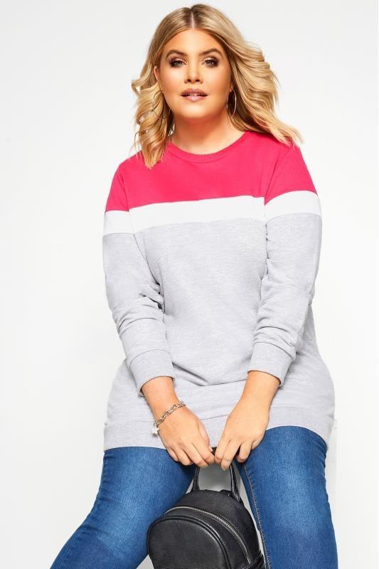Plus-Größen Sweatshirts Grey & Hot Pink Colour Block Sweatshirt