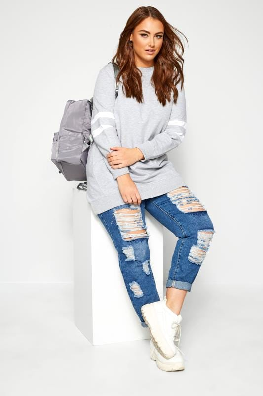Plus Size Sweatshirts Light Grey Varsity Stripe Sweatshirt
