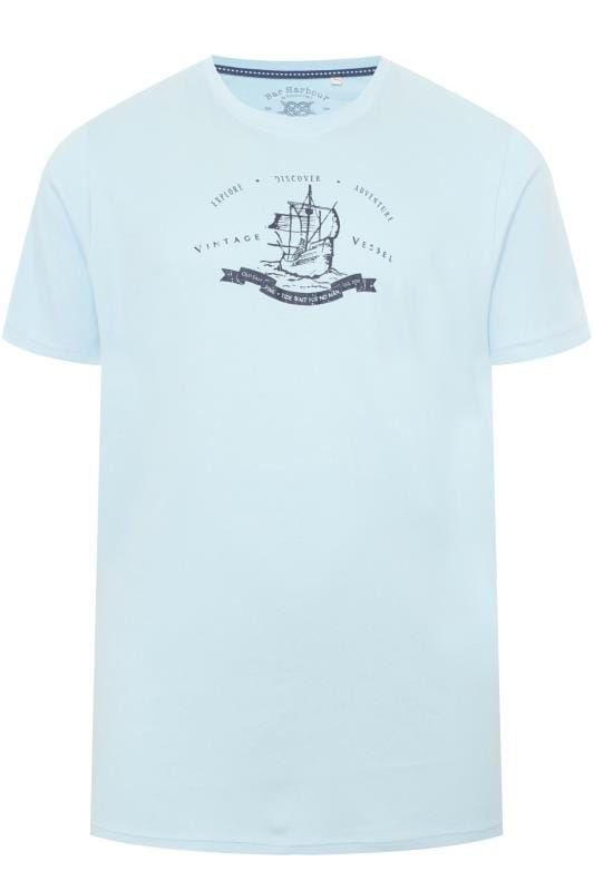 T-Shirts Grande Taille BAR HARBOUR Pale Blue Printed T-Shirt