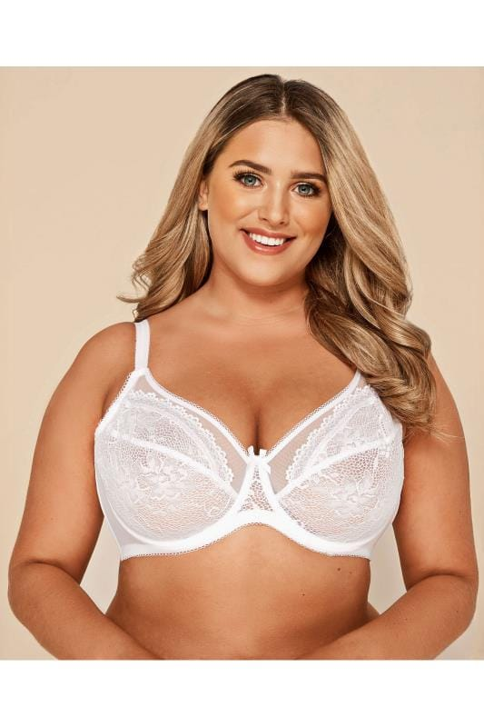 Plus Size Underwired Bras White Floral Lace & Mesh Underwired Bra