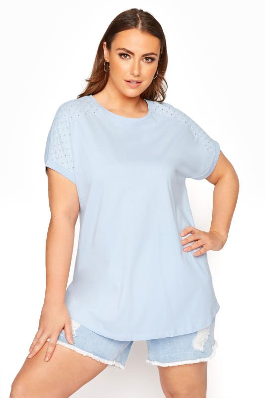 Pale Blue Embroidered Top
