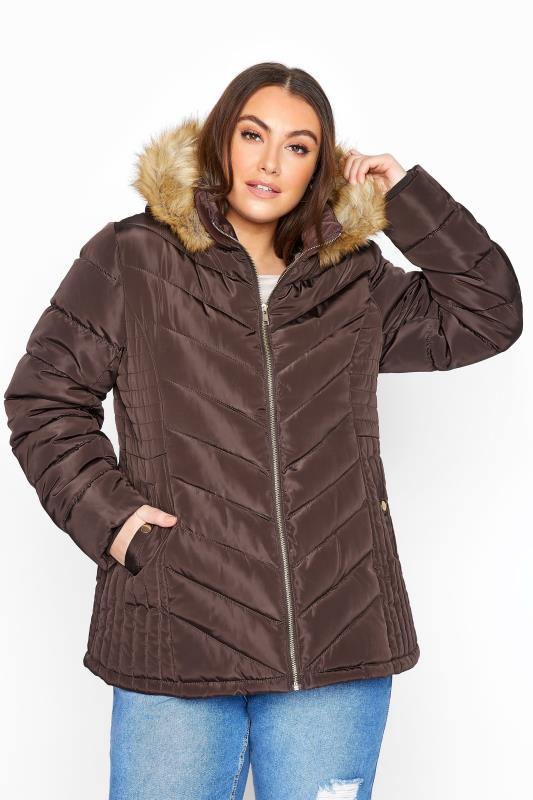 Plus Size  Brown Midi Padded Jacket