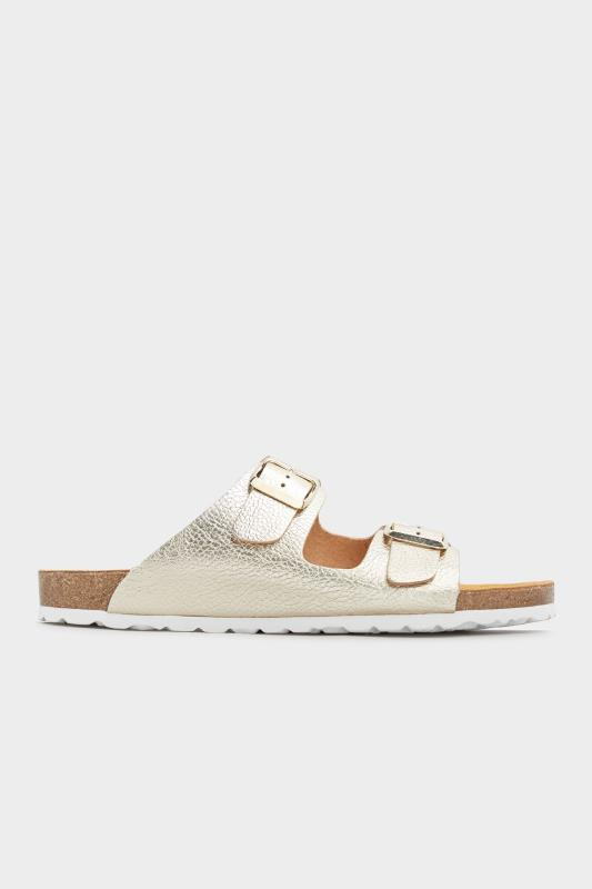 Gold Two Buckle Footbed Sandals_B.jpg