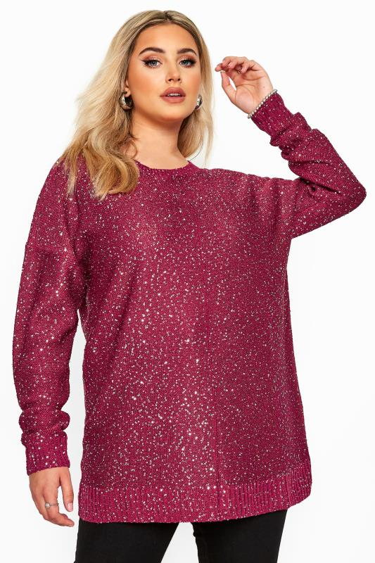 Plus Size Jumpers Pink Sequin Lattice Back Knitted Jumper