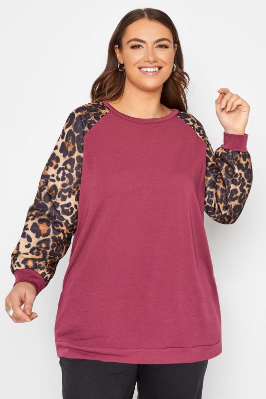 Plus Size  LIMITED COLLECTION Pink Leopard Print Raglan Sleeve Sweatshirt