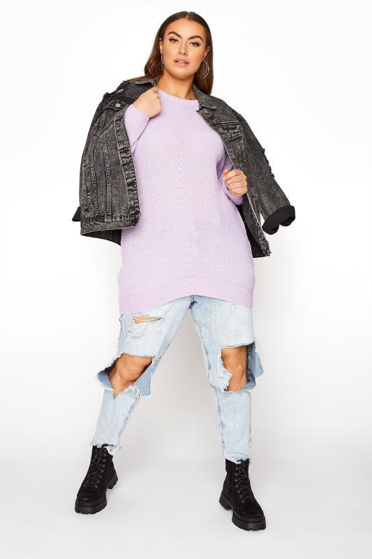 Lilac Knitted Jumper_B.jpg