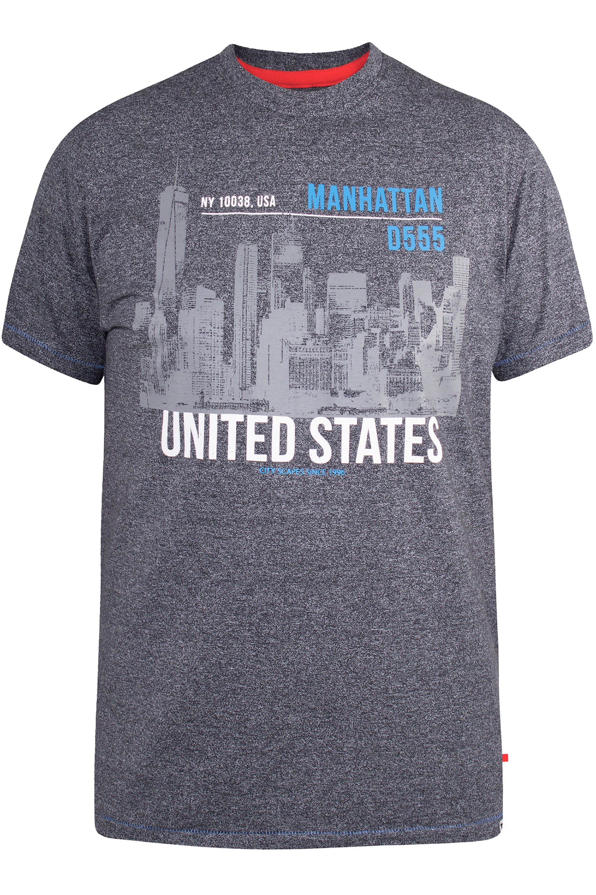 D555 Grey Manhattan Graphic Print T-Shirt