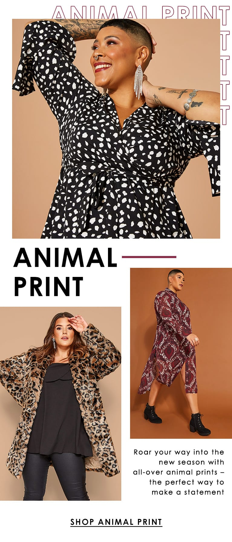 Animal Print >